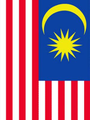 Malesian GP, Sepang (29.9-1.10.2017)