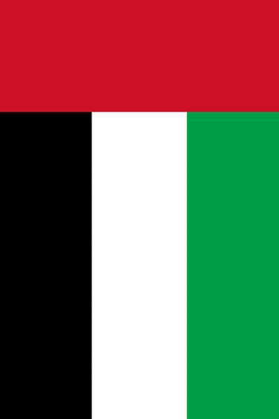 Yhdistyneiden arabiemiirikuntien GP, Abu Dhabi (25-27.11.2016)